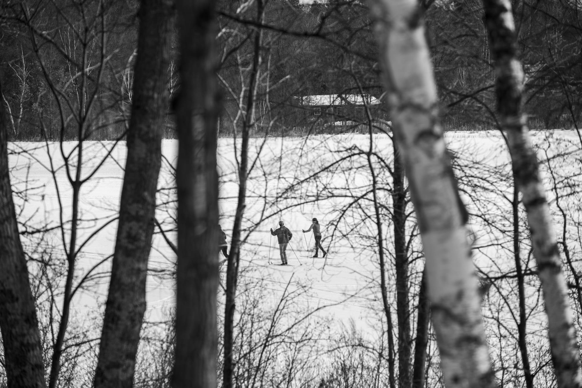 People cross-country skiing on lake during winter.