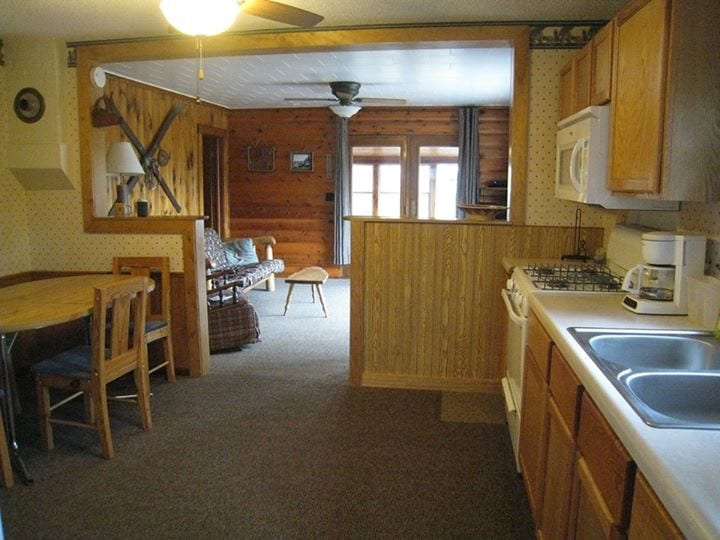Cabin kitchen and living room.
